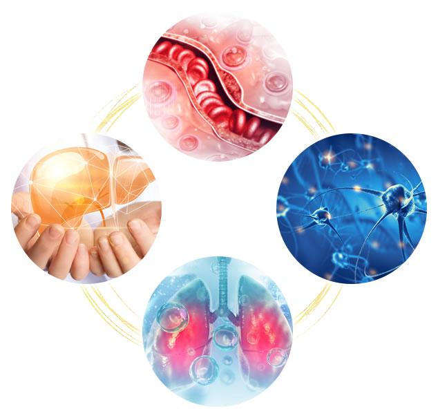 神戸快癒館の4つの循環サイクルの説明の画像